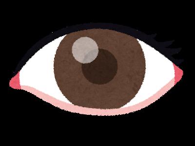 【クーポンあり】評判以上!眼内レンズ手術(ICL)を品川近視クリニックで受けてきたのでその感想を。